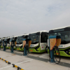 ELECTRIC BUSES TO DOMINATE BY 2025