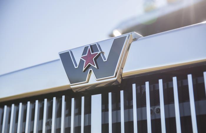 WS (Logo)